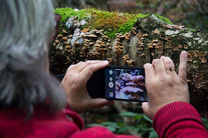 Foto van fotograferen met de smartphone